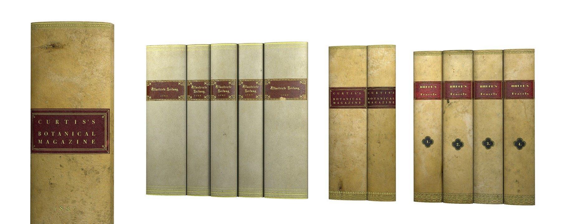 Buchrucken Dekobucher Buchattrappen Eines Alten Bucherschranks